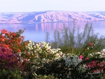 Kinneret Lake, Israel