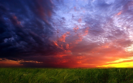 Sunset - colorful, storm, clouds, grass, colors, sky, sunset, green, beautiful, field, nature