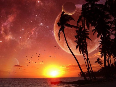 the perfect time... - sunset, orange, peace, moon, palm trees, perfect, beach