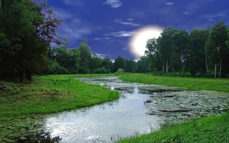 Full Moon - grass, beautiful, clouds, moon, splendor, green, river, evening, reflection, light, blue, forest, lovely, view, sky, trees, lake, come, tree, water, planet, moonlight, peaceful, nature, landscape
