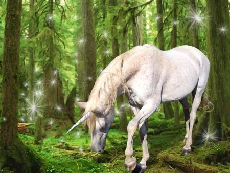Unicorn - unicorn, fantasy, unicornio