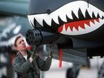 A-10 Thunderbolt II Cannon GAU 8 Avenger_1