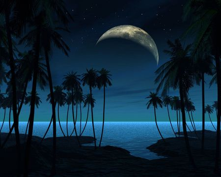 The Night Beach - beach, tree, the, mond, blue, night