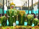 Leaf Elephant