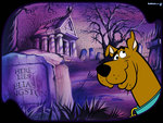 Scooby Doo in the graveyard