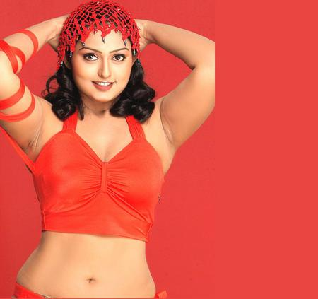 Vindya - south india, model, tamil actress, queen, slim, actress, beauty, tamil, vindya
