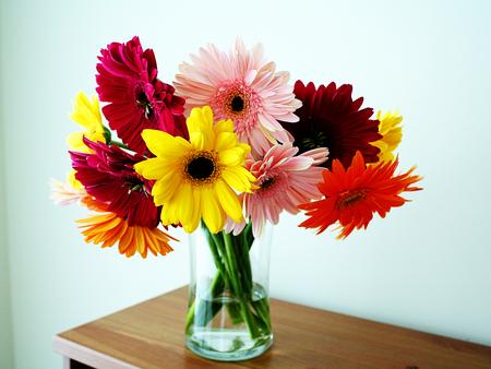 Desktop Nexus Nature & beautiful gorgeousflowers in vase - Flowers \u0026 Nature ...