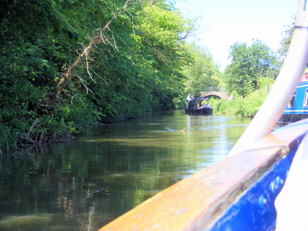 A trip on a canal boat. - water, boat, relaxing, canal
