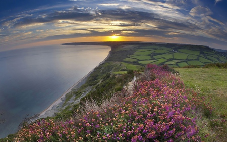 Amazing View - hills, heath, peaceful, great, pink, day, sun, natural, orange, foam, fell, horizon, plantations, sky, water, sunrises, scene, photoshop, cool, fields, photography, sunsets, panorama, gold, beaches, evening, mirror, moorland, mounts, sea, great britain, colors, splendor, sand, trees, nature, yellow, lovely, dawn, wawes, sundown, field, reflections, feild sky, pretty, colorful, sunlight, white, amazing, swell, coast, colours, reflected, corner, greenroofs, flowers, grau, england, rays, scenery, clouds, east anglia, fullscreen, scenario, grass, grasslands, ocean, declive, golden, moor, cenario, desktop, multicolor, flower, landscape, sunset, sunshine, blue, nice, mountains, wallpaper, beauty, beautiful, trunks, spring, green, view, beach, photo