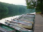 Line of Canoes