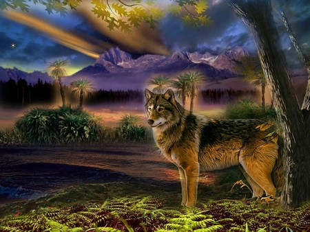 Colorful Wolf Szene - Fantasy & Abstract Background ...