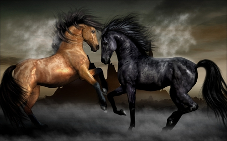 Horses - pretty, wonderful, stunning, adorable, sweet, fascination, challenging, nice, fantasy, elegance, loveliness, bright, two beauties, best, beauty, buckskin, lovely, black, delight, grace, horses, brown horse, cute, paradisaic, cool, stylish, colorful, special, brown, black horse, charm, beautiful, superb, elegant, black horses, animal, clear image, photography, duo, close up, royal, delightfully, gorgeous, animals, amazing, marvelous, colors, extraordinary, horse, brown horses, charming, dark, attractive