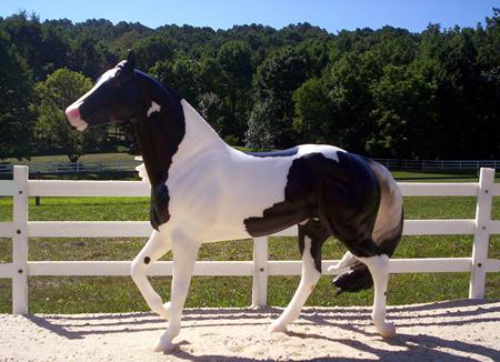 Side Winder The Paint Horse