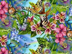 butterflies world