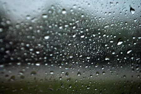 Rainy Day - drops, missouri, water, window, car, day, trees, rain