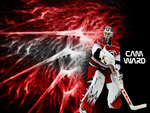 Cam Ward Hurricanes Goalie