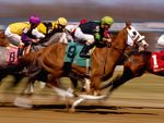 Thoroughbred Horse Racing - Turfway Park, Kentucky