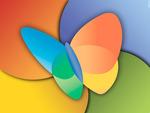 MSN Butterfly