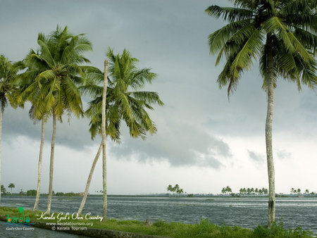 kerala beaches \u0026 nature background wallpapers on desktop nexuskerala