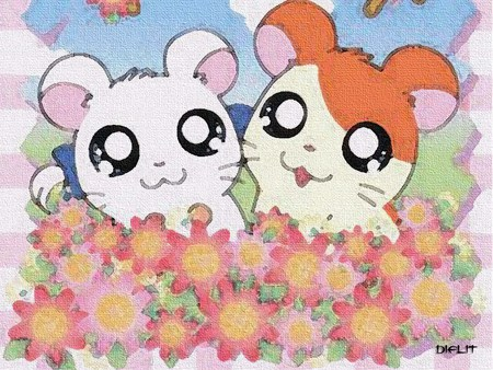hamtaro and bijou - gerbils, bijou, series, anime, tv, hamtaro