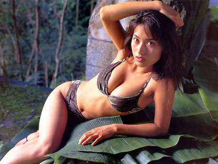 asian sexi model - beautiful, asia, model, asian, bikini, hot