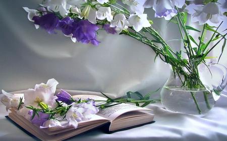 lovely flowers wallpaper  Comments on Lovely Flowers - Flowers Wallpaper ID 401143 - Desktop ...
