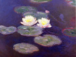 Monet's Waterlilies