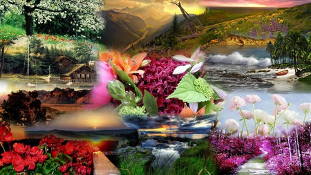 Natural Beauty - grass, mountains, flowers, fields, sunset, cabin, lake, falls