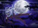 Inuyasha in the moon light night