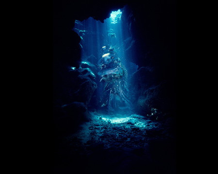 Diver - underwater, water, diving, blue