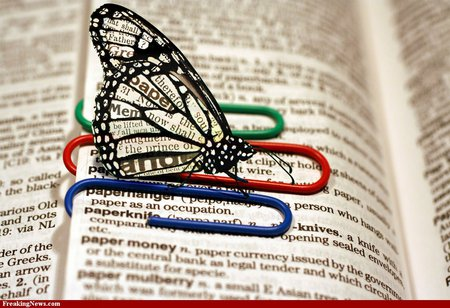 Dictionary and a butterfly - red, clear wings, dictionary, butterfly, green, words, paper clips, blue
