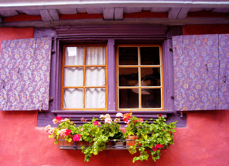Flowered window - building, flowers, house, window