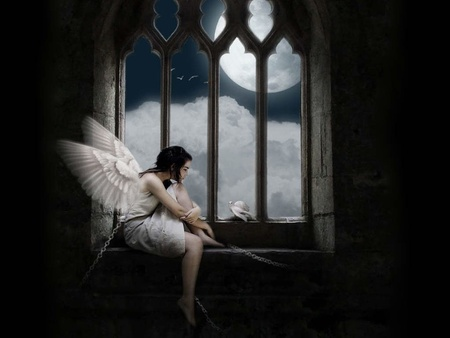 Angel in Prison - shackle, iron shackle, dark art, dark, angels, dove, angel, caught, prison, captured