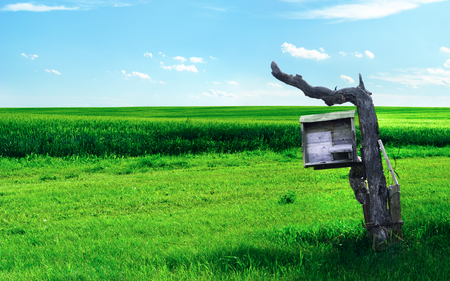Wonderworld - post, beehive, sky, agricultural, farmland, green, nature, field, blue