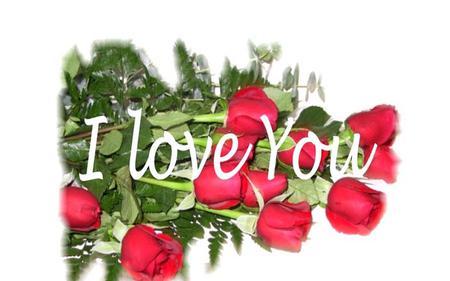 I Love You Flowers Nature Background Wallpapers On Desktop Nexus
