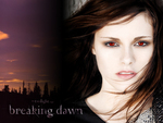 breaking dawn - bella