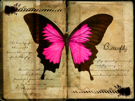 Butterfly pages