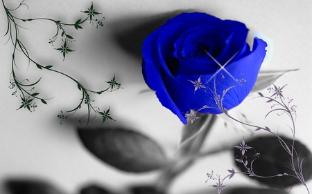 BLUE ROSE - design, blue, rose, photoshop, blossom, flower