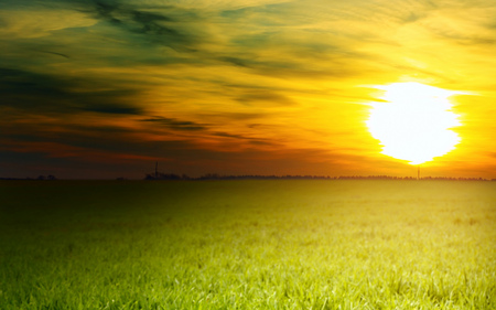 Peaceful Sunset - beautiful, grass, peaceful, sunsets, nature, sun