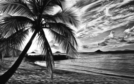 August Memories - art, islands, sun, see, dusk, black, palm, beautiful, sunset, clouds, beach, august, tree, vacations, white