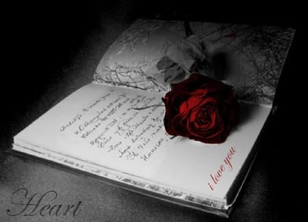 Gothic Book Of Love