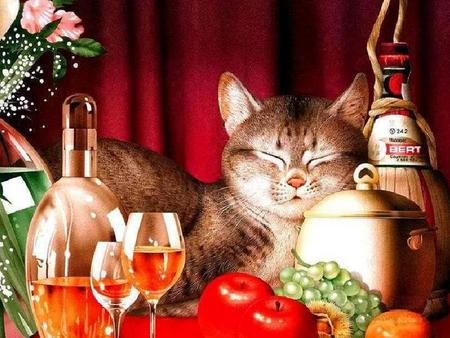 Contentment - flowers, wine, pot, bottle, cat, glasses, fruit
