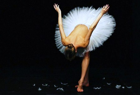 Swan lake bow - bow, ballerina, end of performance, white feathers on floorswan lake