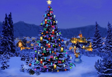 Beautiful Christmas Tree Beaches Nature Background Wallpapers