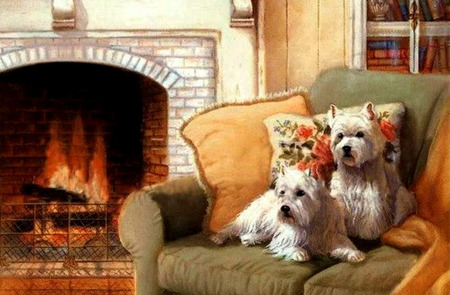 cozy dogs animals background wallpapers on desktop nexus image rh animals desktopnexus com Cozy Gas Fireplaces Cozy Fireplace with Hot Chocolate