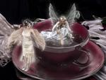 Coffee Faeries