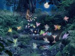 Colorful Fairies