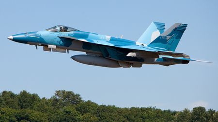 F18 Hornet - f18, aggressor, fighter, military, jet, hornet, blue
