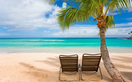 Summer - waves, lounges, blue, sun chairs, tropical, chair, palm tree, beautiful, summer, trees, nature, peaceful, water, sea, sand, shadows, chairs, clouds, coconuts, view, ocean, beach, scene, sky, palm, chairs relaxe, reflection, tree, beach chairs
