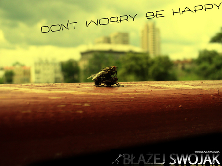 dont worry be happy - warry, dont, be, happy